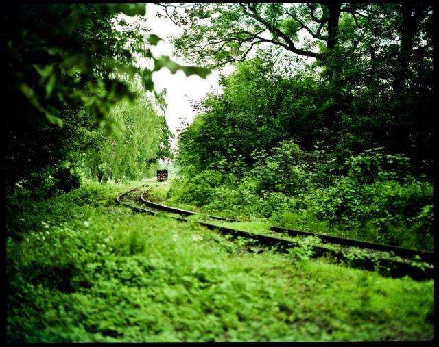 Rewalska kolej wraca na kolację do Gryfic, Dreżewo.
